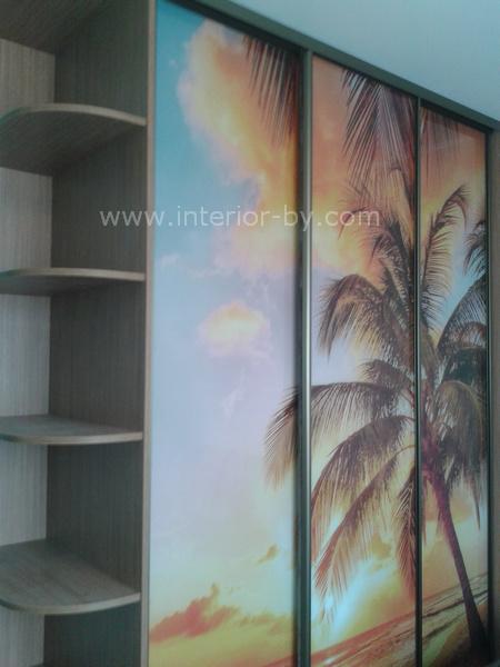 Шкаф купе фотопечать пальма
